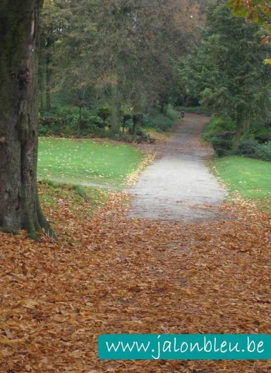 automne 3