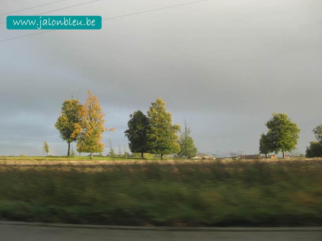 route lenteur
